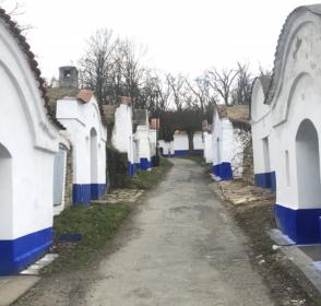 Areál vinných sklepů Petrov | Plže – Slovácko sa nesúdí