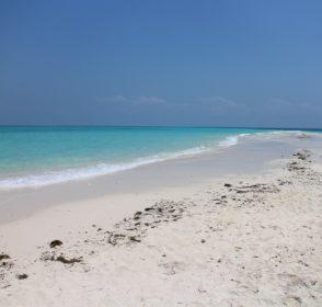 Dovolená na Zanzibaru – co vědět před cestou